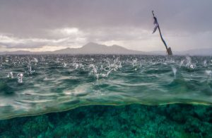 Rain Drops on Water, Bunaken Island, Manado, Indonesia