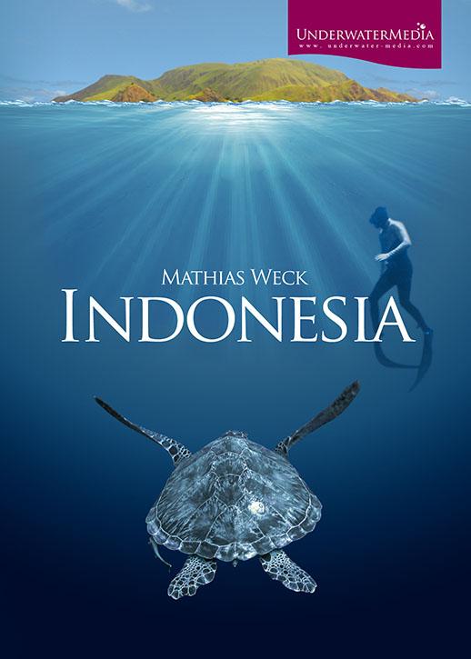 Komodo Island Movie Komodo Movie Trailer And Movie